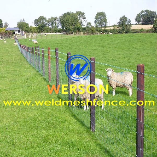 Bull Wire,cattle fence ,hog wire ,sheep fence