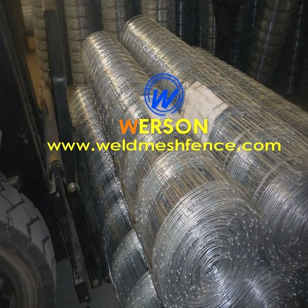 Hinge Joint Fencing Wire